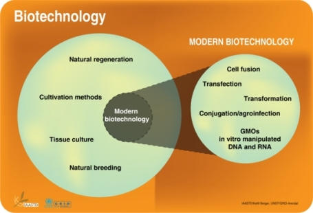 biotechnology-and-modern-biotechnology-defined_b9d8