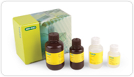 tgx-fastcast-tgx-stain-free-fastcast-acrylamide-kits-for-gel-electrophoresis-press-release