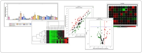 Analyze data using bar charts, clustergrams, scatter plots, volcano plots, or heat map analysis
